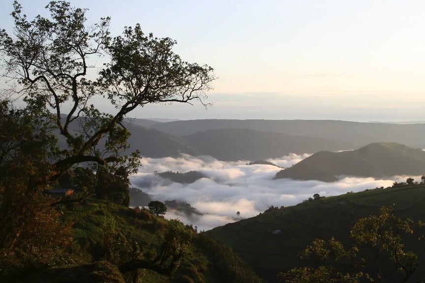 Morning mists near Virunga, DRC. Source: Heather Thorkelson, Creative Commons